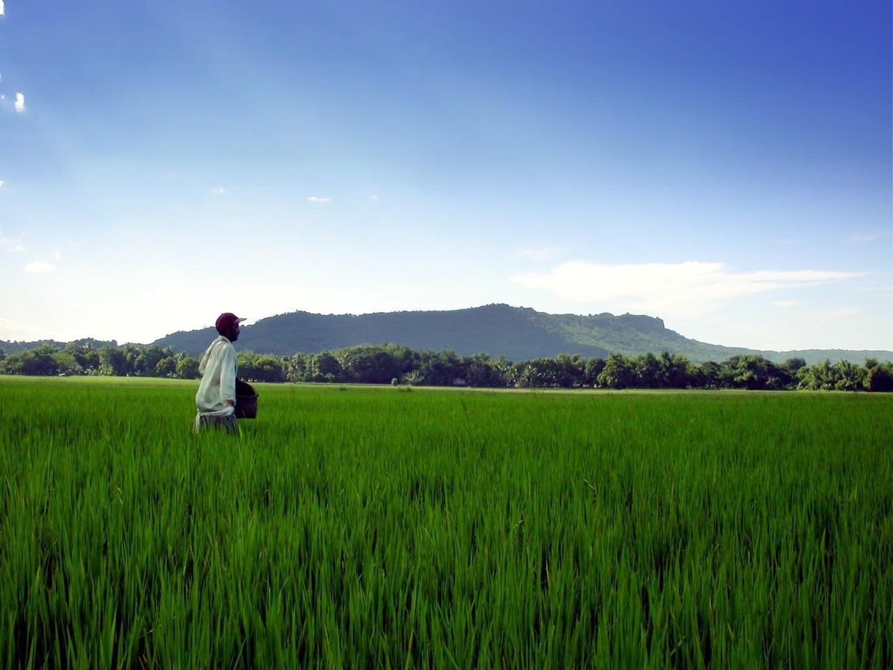 Ekologia – rolnicze zmiany